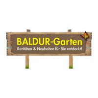 Baldur Garten Gutschein At Exklusive 30 Rabatt Im Marz 2021